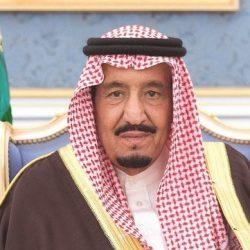 خادم الحرمين يزور الأردن ويحضر القمة العربية الـ «28»