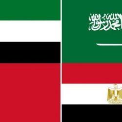 الدول الأربع المقاطعة لقطر تضيف 9 كيانات و9 أفراد إلى قوائم الإرهاب المشتركة