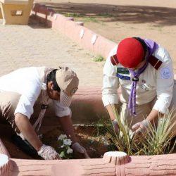 المشروع الوطني الكشفي لنظافة البيئة وحمايتها بتعليم الشمالية