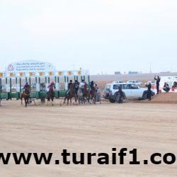 بالصور إقامة سباق الخيول بطريف على كأس إمارة الشمالية بحضور وتشريف سعادة محافظ طريف