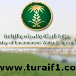 """""""البيئة"""" تعلن 93 وظيفة شاغرة للمواطنين والمواطنات"""