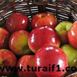 """""""الغذاء والدواء"""" تطمئن المستهلكين: المواد الشمعية المضافة على الفواكه لا تشكل خطراً على الصحة"""