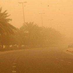 الأرصاد: توقعات بعواصف ترابية تؤدي إلى شبه انعدام في الرؤية غداً على الحدود الشمالية