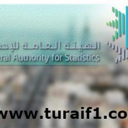 الهيئة العامة للإحصاء: المملكة على بُعدِ عامٍ من تعداد السعودية 2020