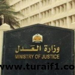 """""""العدل"""": 52 ألف جلسة قضائية وصدور 29 ألف حكم وقرار تنفيذ الأسبوع المنصرم"""