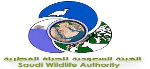الهيئة السعودية للحياة الفطرية تعلن عن اسماء المرشحين لوظائف المراتب الرسمية