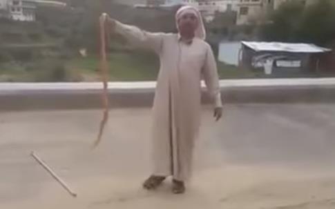 """مواطن يلاعب """"كوبرا"""" سامة عثر عليها بأحد الطرق بالنماص"""