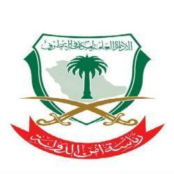 سمو أمير منطقة الحدود الشمالية يستقبل الرئيس التنفيذي لمجموعة الاتصالات السعودية