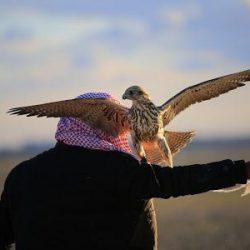 أمير الحدود الشمالية يشرف حفل أهالي محافظة طريف بمناسبة زيارة سموه التفقدية للمحافظة