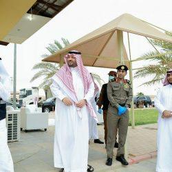 بالفيديو .. الجمارك السعودية تنجح في إحباط محاولة تهريب 499,321 حبة كبتاجون عبر منفذ الحديثة