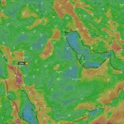 اكتشاف بقايا حوت منقرض منذ 37 مليون سنة شمال السعودية