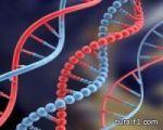 مواطن يعثر على أبناء شقيقته المفقودة قبل 60 عاماً وينتظر تحليل الـ DNA