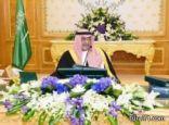 """""""الوزراء"""" يمنح وزير الداخلية صلاحية التصريح حول موقوفي جرائم الأمن الوطني"""