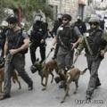 قوة اسرائيلية مزودة بكلاب وروبوتات تتقصى أنفاق غزة