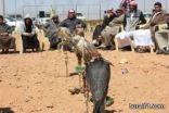 بالصور إقامة مزاد طيور ضمن فعاليات مهرجان طريف الشعبي ومسابقة الصقور