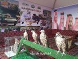 بالصور..الإنتهاء من الإستعدادات داخل جناح الحدود الشمالية في مهرجان الجنادرية