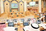 مجلس الشورى يوافق على تشكيل لجانه.. ويختار امرأة رئيساً لإحدى اللجان