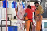 بلدية محافظة طريف تبدأ بالتشغيل الأولى التجريبي لمشروع (مسلخ البلدية)